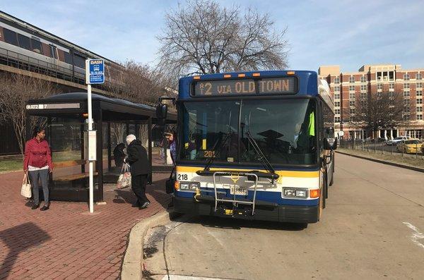 dash-bus-alexandria-transit.png