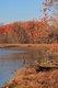 dyke-marsh-wildlife-preserve.jpg