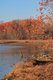 dyke-marsh-wildlife-preserve.jpg