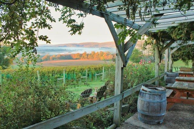 loudoun-county-winery-virginia.jpg