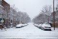 alexandria-snow-10.jpg