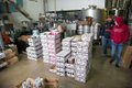 aslin-beer-alexandria-4.jpg