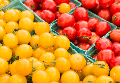 tomatoes-delray-farmers market.png