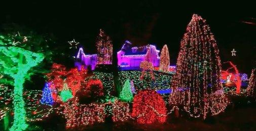 collingwood-lights-2018-2019.png