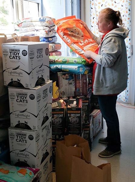 AWLA Staff Member Sorts Through Donated Pet Supplies.jpg