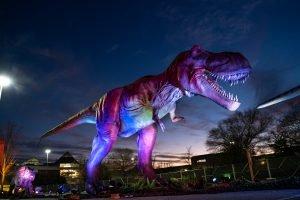 DinoSafari-2021-Northpoint-Mall-51-300x200.jpeg