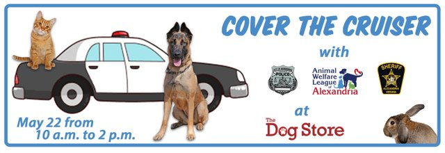 cover-the-cruiser-header-768x264.png