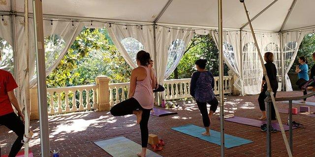 yoga101.jpg