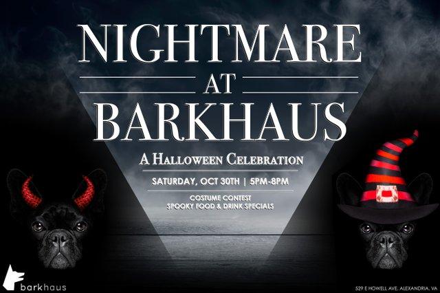 Nightmare at Barkhaus.jpeg